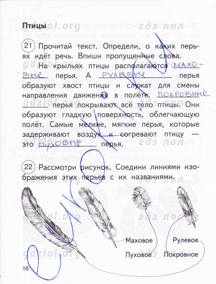 ГДЗ по Окружающему миру 2 класс Федотова,Трафимова, Трафимов Рабочая тетрадь. Часть 1