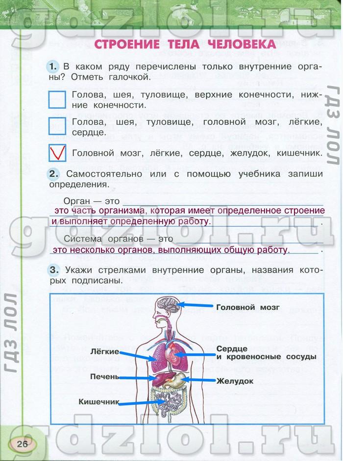 Решебник По Окр Мир Плешаков Новицкая 3 Класс