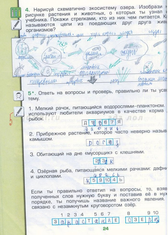 Гдз по истории 6 класс данилов сизова кузнецов без скачивания спиши.ру