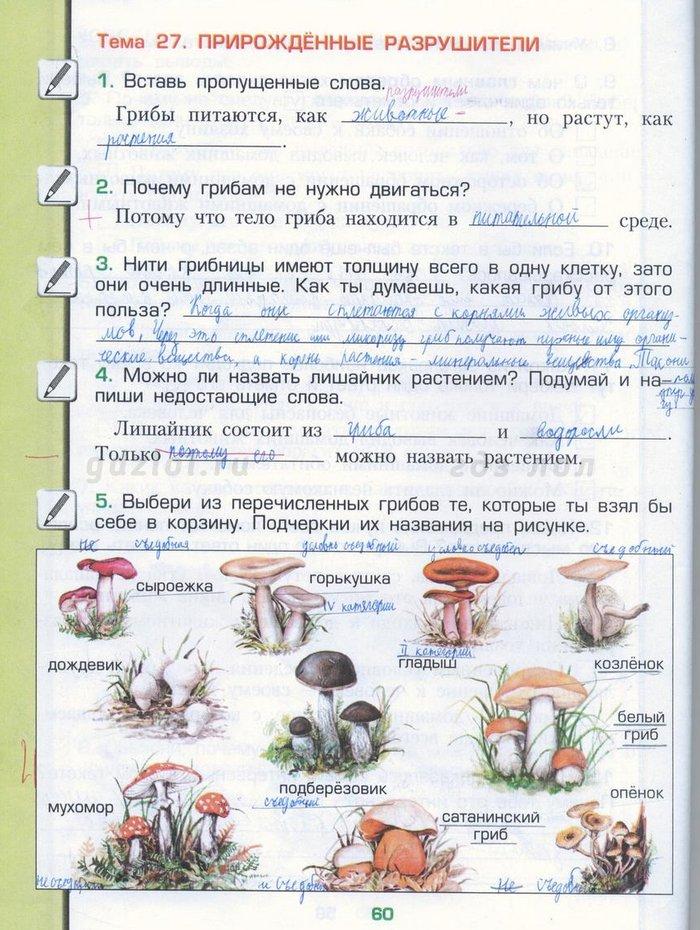 ГДЗ по окружающему миру 3 класс рабочая тетрадь Вахрушев