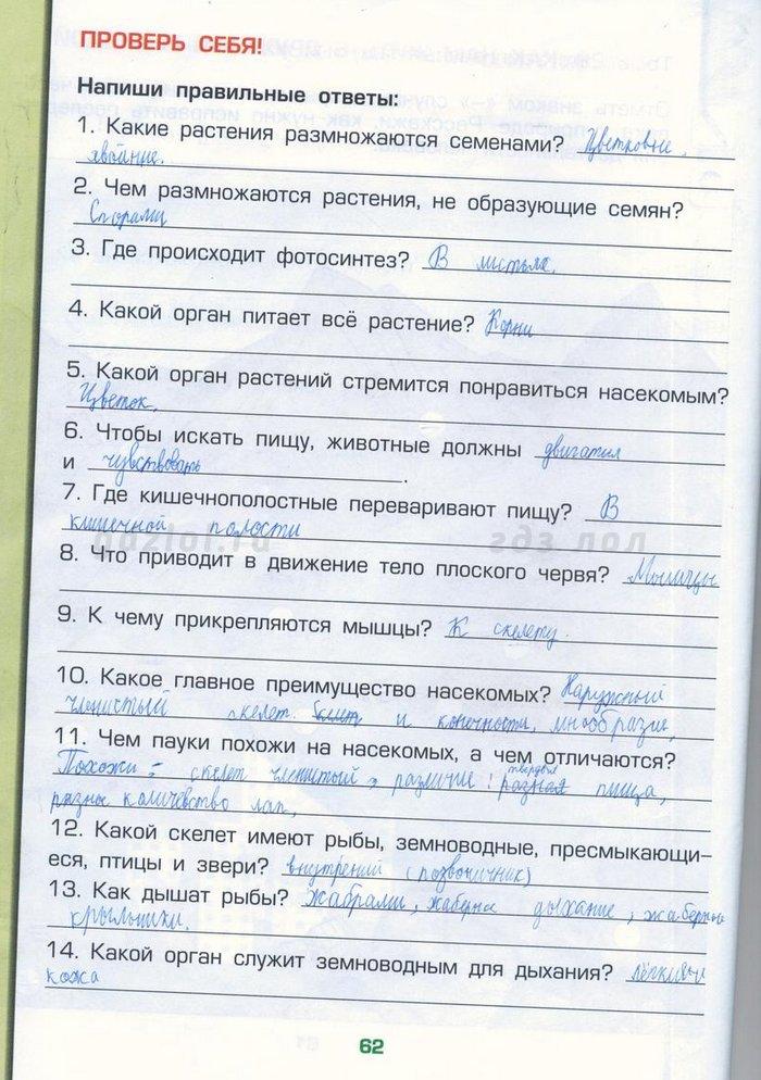 Ответы на учебник биологии 7 класс вахрушев