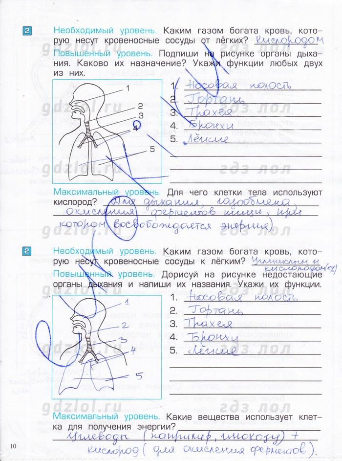 ответы на тесты по окружающему миру 4 класс поглазова шилин
