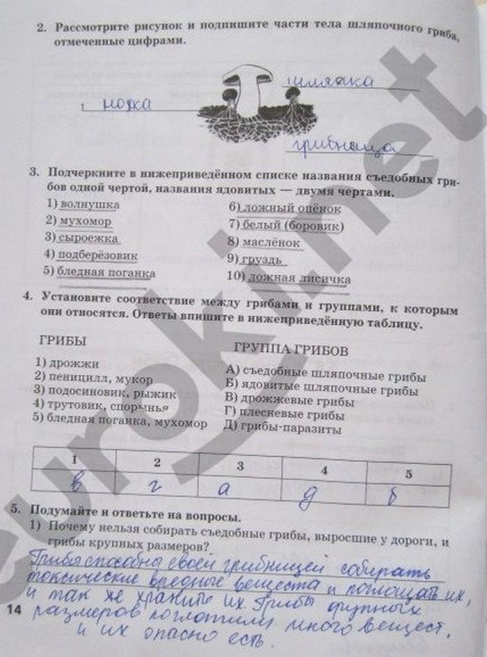 Решебник К Тетради По Биологии 5 Класс Новикова Романова