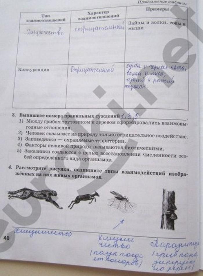 Гдз По Рабочей Тетради Биология 5 Класс Новикова Романова