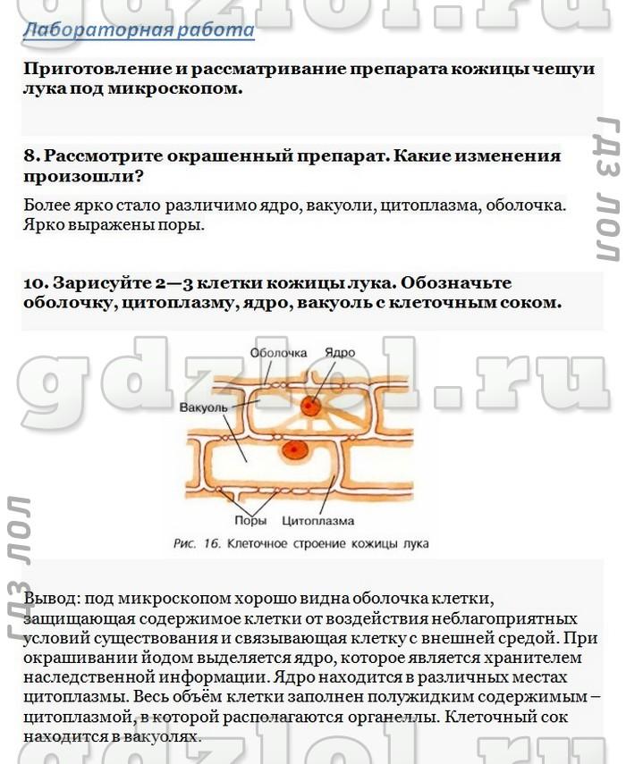 Схема по биологии 5 класс фото 229