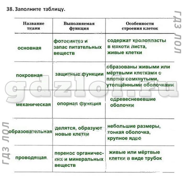 Схема по биологии 5 класс фото 929