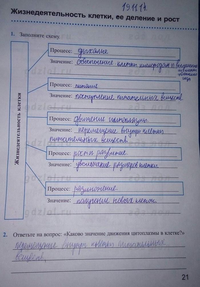 Гдз На Рабочую Тетрадь По Биологии 5 Класс Преображенская