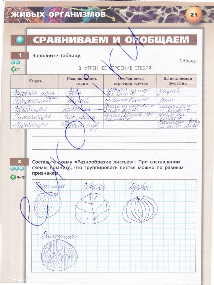 Тетрадь Тренажер 5-6 Класс 2 Часть Сухорукова Гдз
