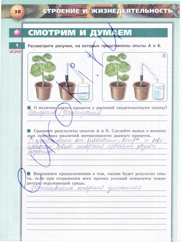 читать Тетрадь-тренажер Обществознание 10 класс Котова онлайн
