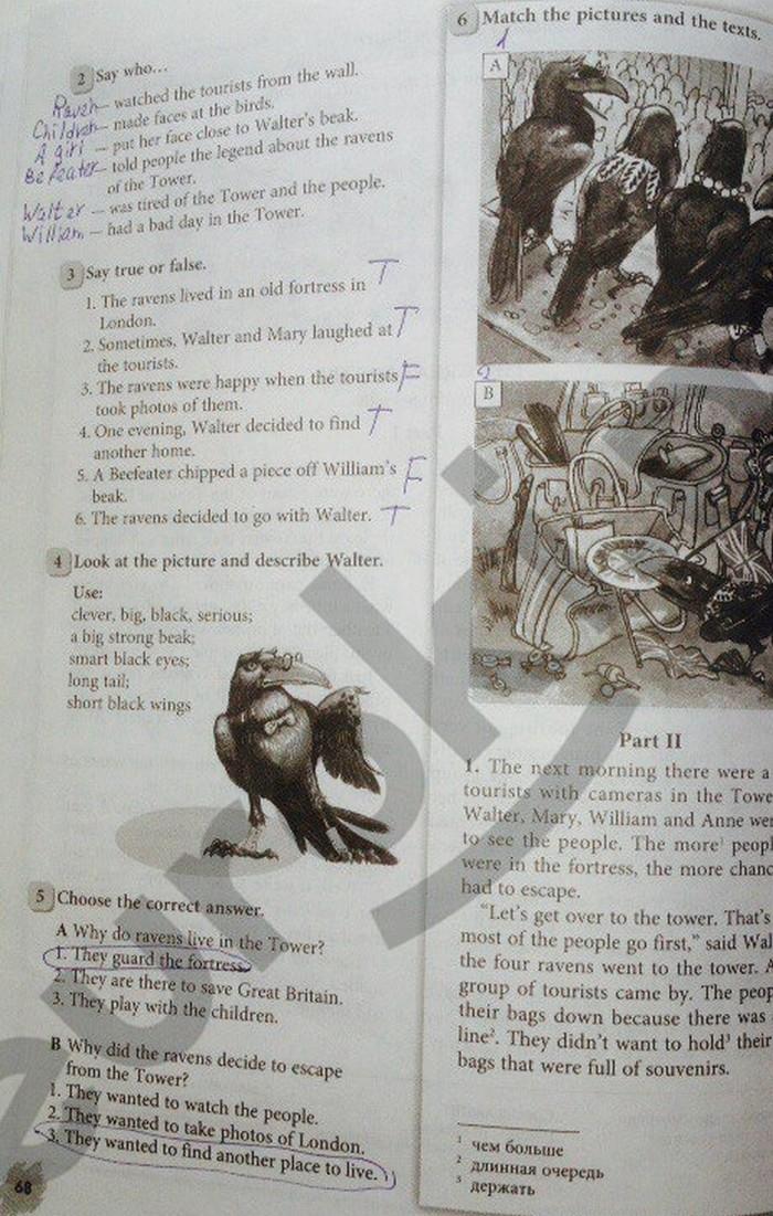 Решебник По English In Mind Workbook 2 Ответы