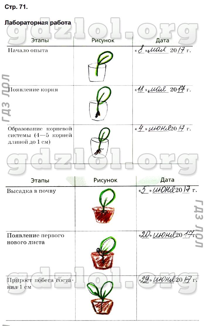 Биология 6 Класс Гдз Сонин С Пчелой Ответы На Вопросы