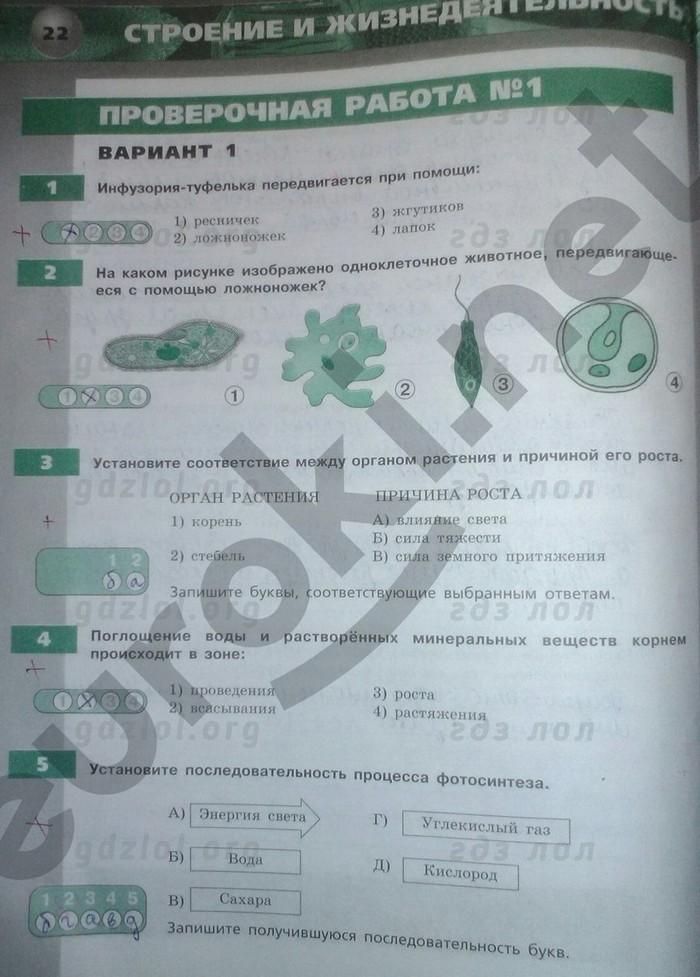 гдз 5-6 класс по биологии тетрадь экзаменатор